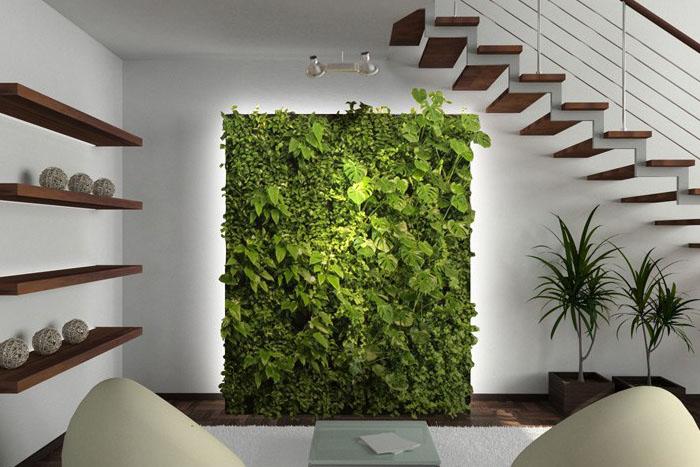 Tanaman Hias Untuk Inspirasi Dekorasi Rumah Minimalis