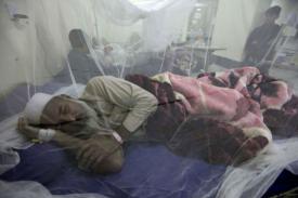 WHO: Batasi Vaksin Dengue ke Orang yang Sudah Terinfeksi