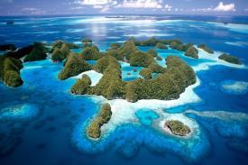 Eksotisme Terumbu Karang Negeri Palau